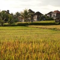 Indonesië, Bali