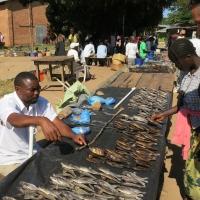Malawi, boven èn onder water