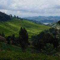 Land van duizend heuvels