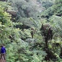 Rondje Kenia