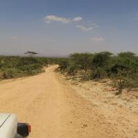 Turkane Route I - Naar de Omo Vallei