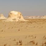 Woestijn 20