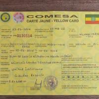 Comesa Yellow Card